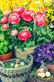 Fresh spring flowers and easter eggs decoration. retro style Royalty Free Stock Image