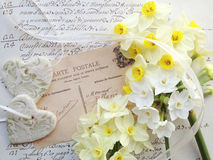 Narcissus flowers and hearts on old handwriting Stock Images