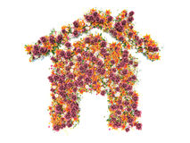 Fresh Spring flowers in the shape of a house Stock Photos