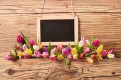 Fresh spring flowers on textured wood royalty free stock photo