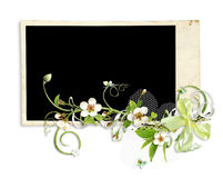 Fresh spring frame with apple tree flowers Stock Photography
