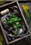 Fresh spring garni bouquet herbs seasoning bunch with scissors Stock Image