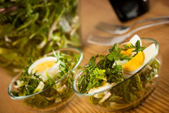 Fresh spring green  dandelion salad closeup Stock Photography