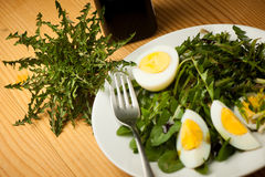 Fresh spring green  dandelion salad with eggs on a plate closeup Royalty Free Stock Photos