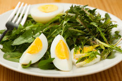 Fresh spring green  dandelion salad with eggs on a plate closeup Royalty Free Stock Photography
