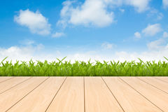 Fresh spring green grass with blue sky. And wood floor background Stock Images