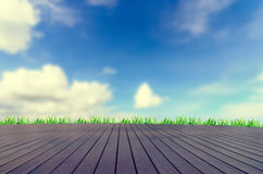 Fresh spring green grass with blue sky Stock Photo