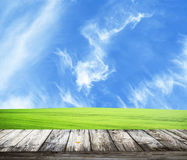 Fresh spring green grass with blue sky and wooden floor Stock Photography