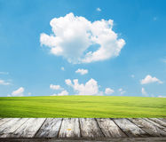 Fresh spring green grass with blue sky and wooden floor Royalty Free Stock Photo