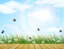 Fresh spring green grass with flower and butterfly. Illustration of Fresh spring green grass with flower and butterfly Royalty Free Stock Images