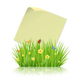 Fresh spring green grass frame template with curling  blank sheet paper Royalty Free Stock Photo