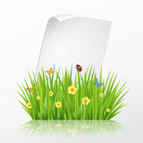 Fresh spring green grass frame template with curling  blank sheet paper Stock Photos