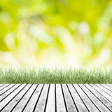 Fresh spring green grass with green bokeh and sunlight and wood Royalty Free Stock Photos