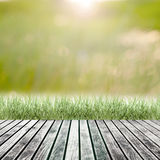 Fresh spring green grass with green bokeh and sunlight and wood Royalty Free Stock Images