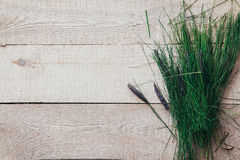Fresh spring green grass lie over wood fence background Stock Photos