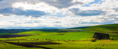 Fresh spring land Stock Image