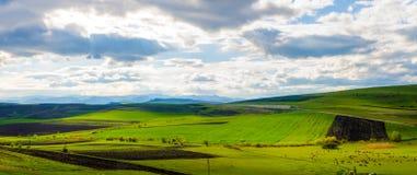 Fresh spring land stock image
