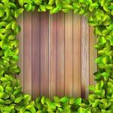Fresh spring leaf plant over wood. + EPS10 Royalty Free Stock Photo