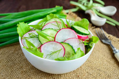 Fresh spring light vegetarian salad with cucumber and radish and greens. On a wooden background Royalty Free Stock Image