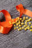 Fresh spring mimosa close up with orange ribbon on old gray wood Stock Photography