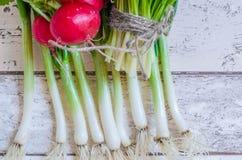 Fresh Scallions and radish Stock Images