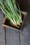 Fresh Spring Onions in a box on the farmers market. Stock Photo