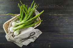 Fresh spring onions and old scissors Royalty Free Stock Photo