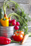 Fresh spring organic vegetables on wooden board Stock Image