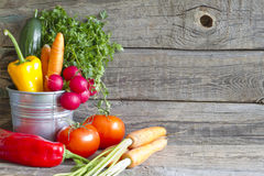 Fresh spring organic vegetables on wooden board Royalty Free Stock Image