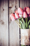 Fresh spring pink tulips Stock Photos