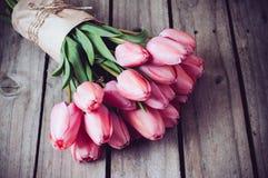 Fresh spring pink tulips Royalty Free Stock Photos