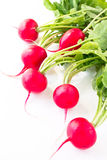 Fresh spring radish. On a white background Stock Photography