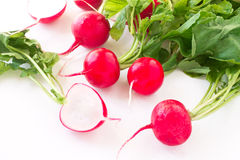 Fresh spring radish. On a white background Stock Images