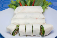 Fresh spring roll. Piece of fresh spring roll on white dish Royalty Free Stock Images