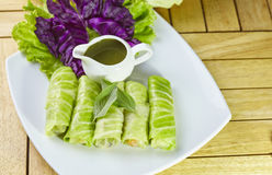 Fresh Spring Roll Stock Image