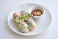Fresh Spring Rolls. Healthy Fresh Spring Rolls. A see-through rice paper rolled around pork stock photography
