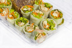 Fresh spring rolls. Fresh spring rolls on plate Stock Image