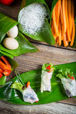 Fresh spring rolls with vegetables and rice noodles Royalty Free Stock Photo
