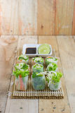 Fresh spring rolls with  vegetables of thai style Royalty Free Stock Image