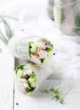 Fresh spring rolls on a white background Royalty Free Stock Photography