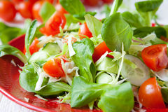 Fresh spring salad with cabbage Stock Photography