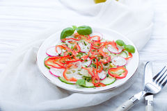 Fresh spring salad with cucumber, radish. And peppers Royalty Free Stock Photos