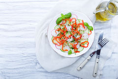 Fresh spring salad with cucumber, radish. And peppers Royalty Free Stock Photography