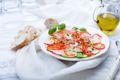 Fresh spring salad with cucumber, radish. And peppers Royalty Free Stock Photo