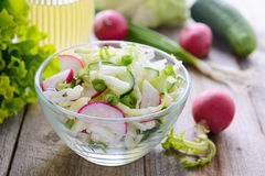 Fresh spring salad from cucumbers, cabbage and radish Stock Images