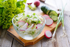 Fresh spring salad from cucumbers, cabbage and radish Royalty Free Stock Photo