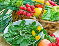 Fresh spring salad - edible dandelion (organic foo. D) and fresh organic fruits and vegetables Stock Photo