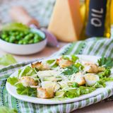 Fresh spring salad with lettuce, eggs, cheese, croutons, green Royalty Free Stock Photography