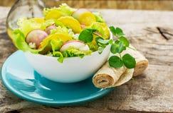 Fresh spring salad radish Stock Image
