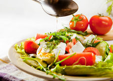 Fresh spring salad with seed oil Stock Image